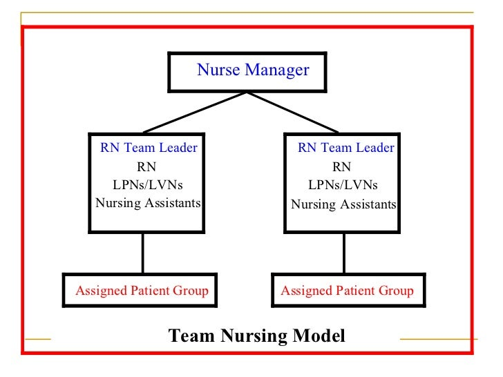 health care delivery model example