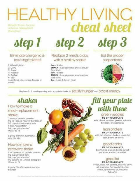 how to healthy living plan example