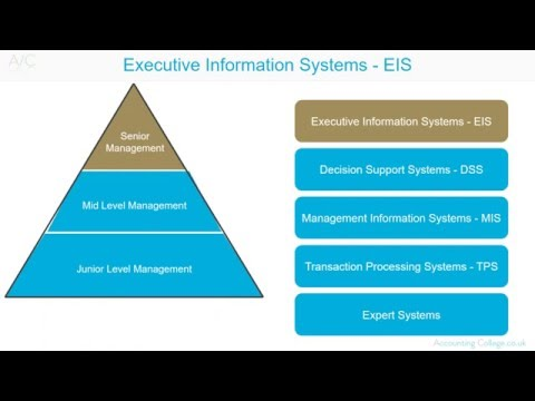 example of executive information system in business