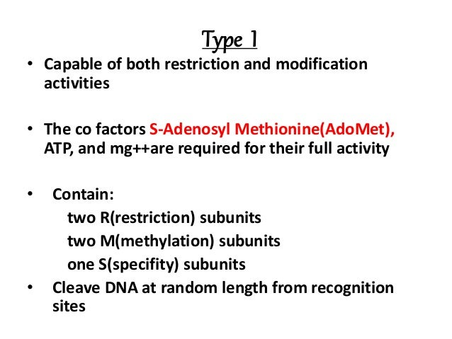 restriction enzyme type 1 example