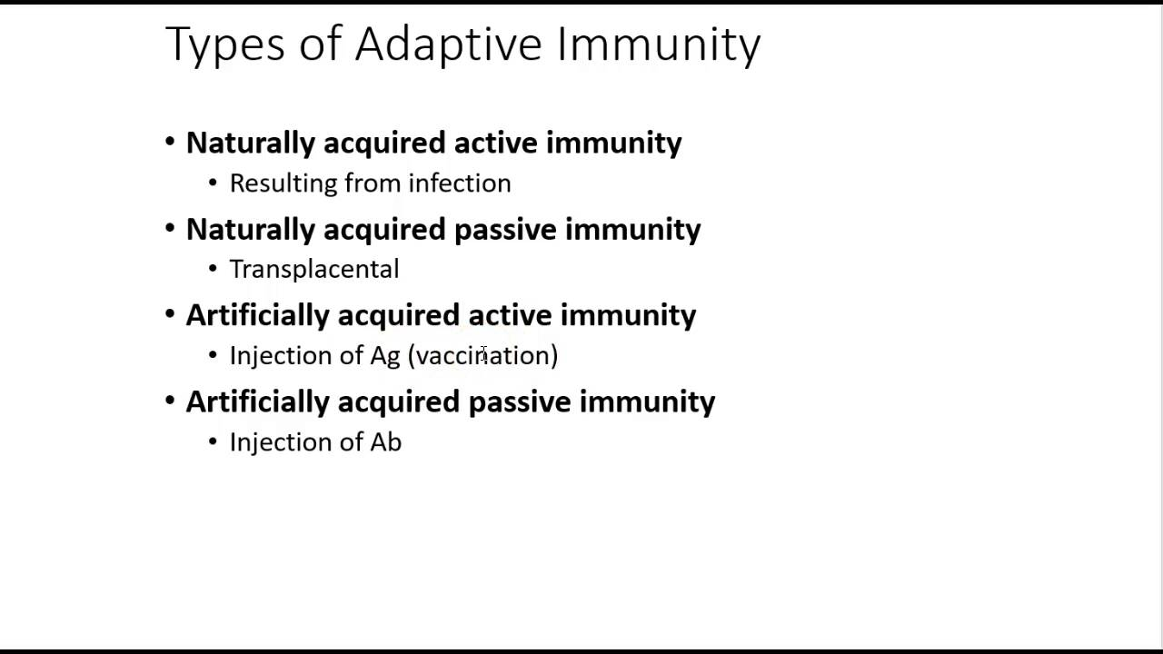 which is an example of active immunity